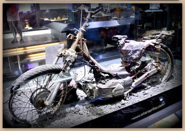 museum Geologi (4)