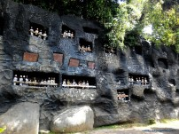 Taman Nusa33_1472196929405